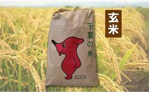 「千葉県長生村」の「長生村産ふさこがね(玄米120kg)」