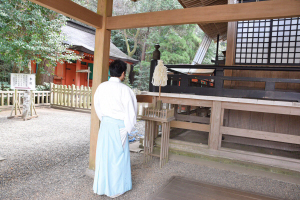 鹿島神宮でお祓い