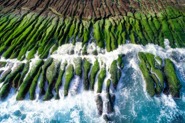 台湾の海岸にある海藻で覆われた老梅緑石槽(グリーン・リーフ)