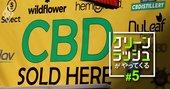 大麻由来成分の国内販売製品を抜き打ちチェック!違法性は大丈夫?