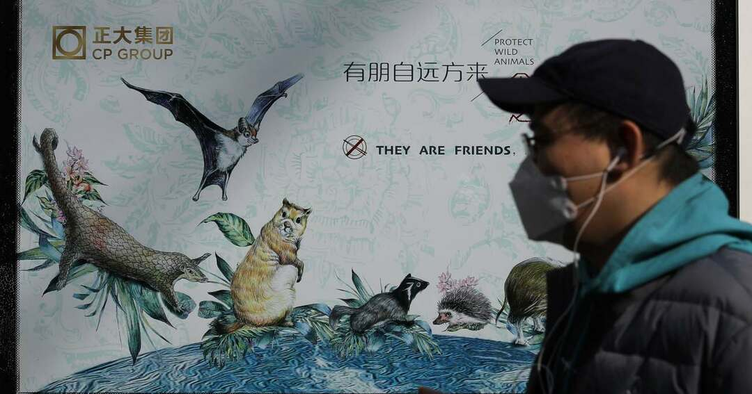 新型コロナ元凶説の「野生動物食」、中国の禁止措置は成功するか