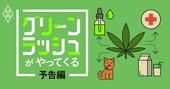 「大麻特需」がやってくる!新たな金脈を前に日本はどうする?
