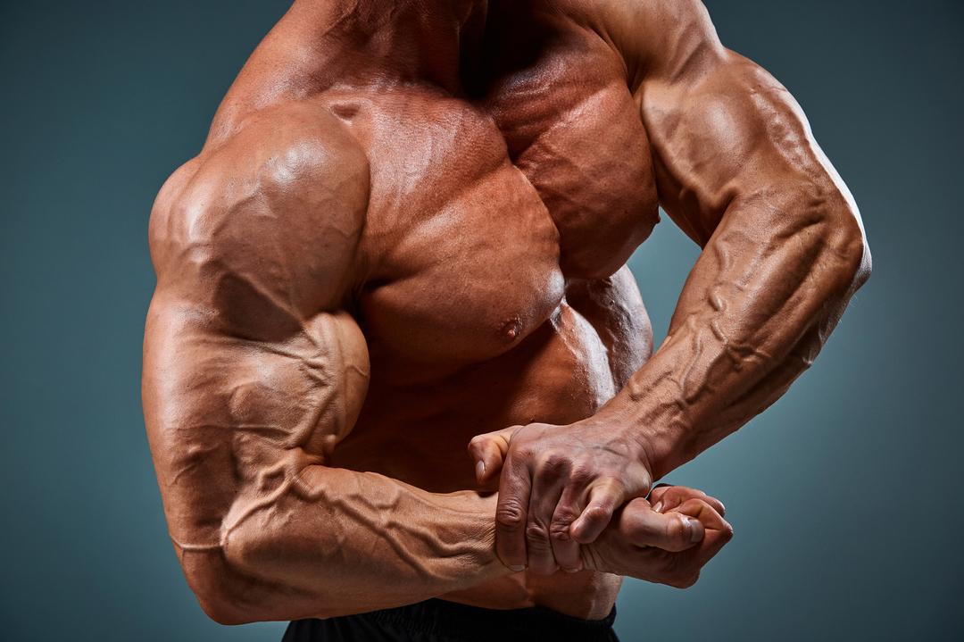 筋力低下は死に繋がる!老化防止に大事なのは筋肉だった