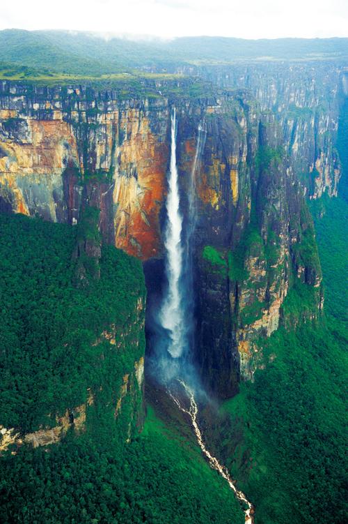 ギアナ高地の画像 p1_32