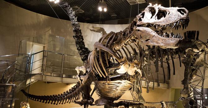 世界に負けない科学教育がある場所、国立科学博物館へ行こう ...