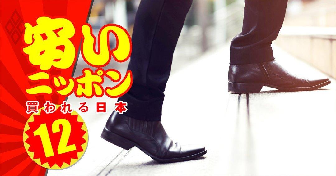安いニッポン 売られる日本#12