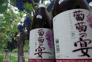 「葡萄の宴」がもらえる「山梨県韮崎市」