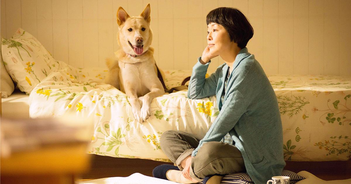 """映画『犬に名前をつける日』の山田監督が語る「犬や猫のために、自分に""""何が""""できるか」"""
