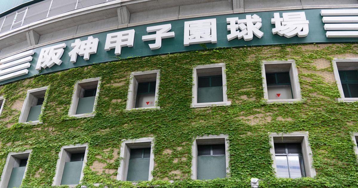 夏の甲子園の裏に阪神「死のロード」、近年は意外にも好成績な理由