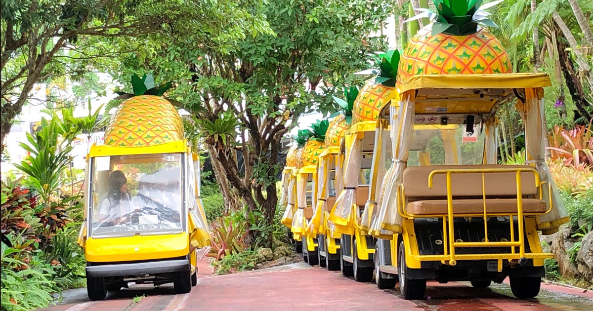 完全自動運転は可能か?沖縄名護市のテーマパークで見た「未来像」