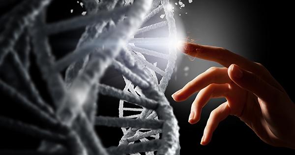 人生も遺伝子も、あなたの手で変えられる。「遺伝学者×医師」が解き明かすDNAの真実