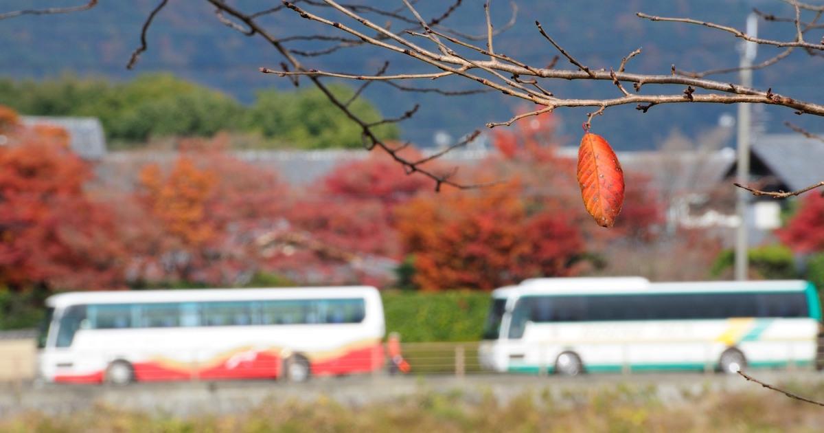 中国でも指摘され始めた日本のサービスの質低下