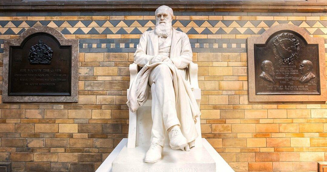 ダーウィンがぶっちぎって正しい