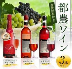 「宮崎県都農町」の「都農ワイン3本セット」
