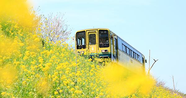 廃線寸前のローカル線「いすみ鉄道」に、乗客を増やすには?
