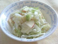 暴飲暴食で疲れた胃をいたわる<br />白菜とリンゴのサラダ