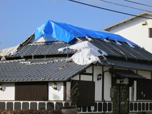 熊本地震で為替、株価、消費増税の行方は?