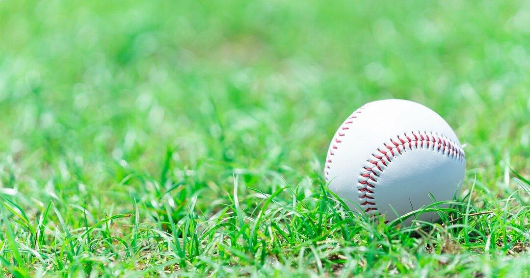 プロ野球「自主退団」物語、育成選手の自信喪失からスキャンダルまで