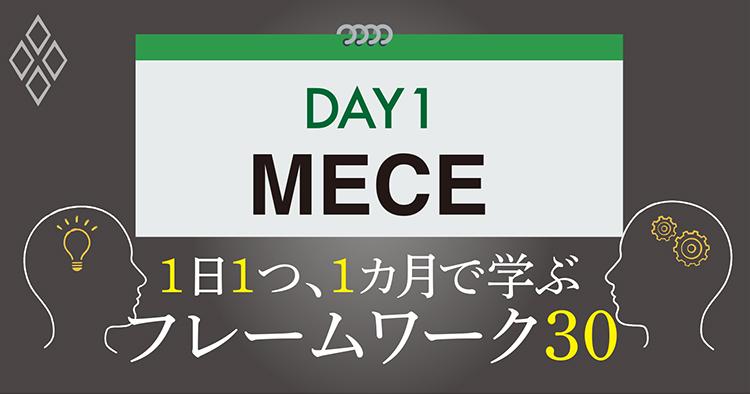 DAY1 MECE