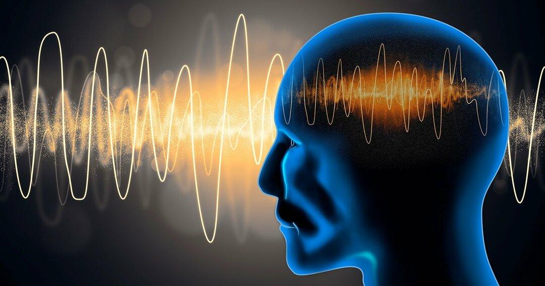 【あなたの脳はどっち派?】脳はストレスとどう戦っているのか?