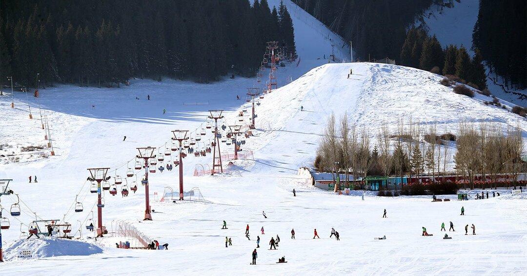 写真:スキーを楽しむ人々