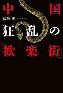 【書評】中国 狂乱の「歓楽街」 富坂聰著