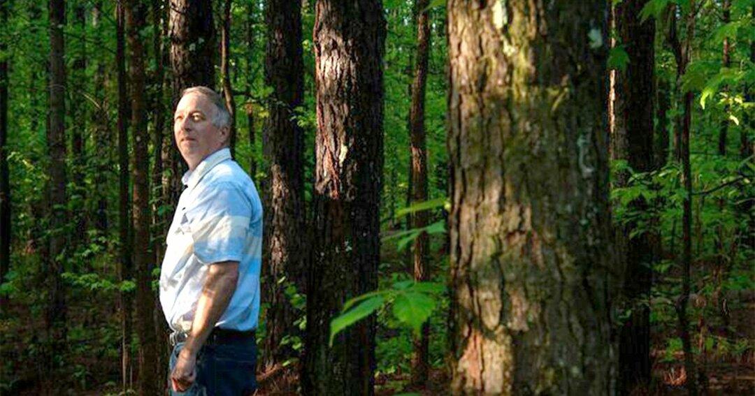 ミシシッピ州コイラにキース・マクダニエル氏が所有するテーダマツの森林。マクダニエル氏は今年、ミシシッピ州に所有する森林を伐採しないことでカーボンオフセットを販売した