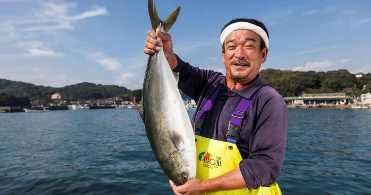 """米国で脂のノリが大人気!日本で養殖する""""あの魚""""とは?"""