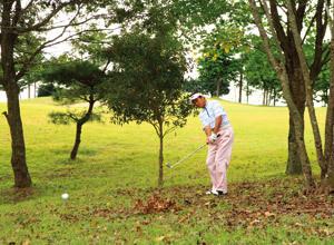 【第38回】アマチュアゴルファーのお悩み解決セミナー<br />Lesson38「失敗しない林からの脱出テクニック」