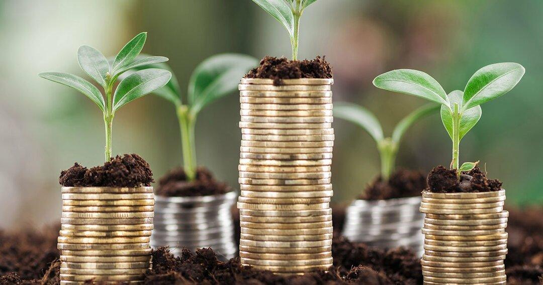 株で2億円を稼いだ<br />現役サラリーマンの教え<br />「割安成長株は中小型株が多い」