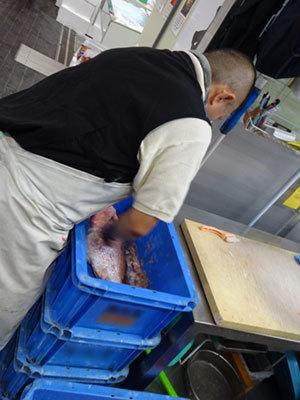 豊洲市場でプラスチックケースの中でタイのうろこを落とす業者