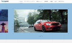 テックポイント・インクは、HD監視カメラシステムと自動車用インフォテイメントシステムを対象とした独自のHDビデオ接続技術を開発しているファブレス半導体メーカー。