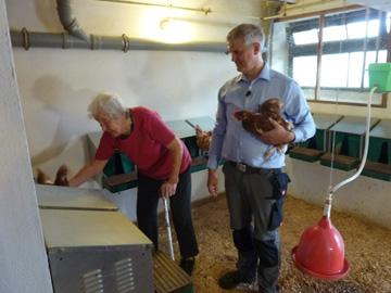 鶏小屋で卵を取り出すマリアさん