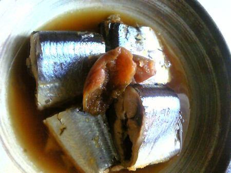 脂の乗った旬の「秋刀魚《さんま》」は、<br />栄養豊富な庶民の味わい